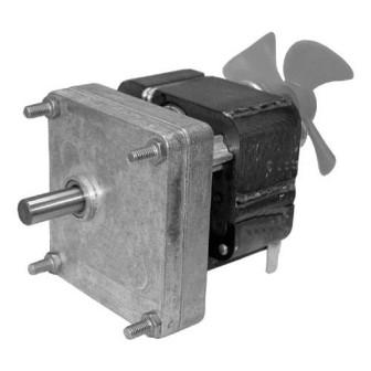 Star Motor Kit