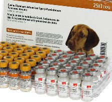 Canine 1-DAPPv (5-way) Dog Vaccine